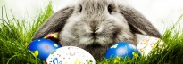 Australia Office Easter Holiday Working Hour '15