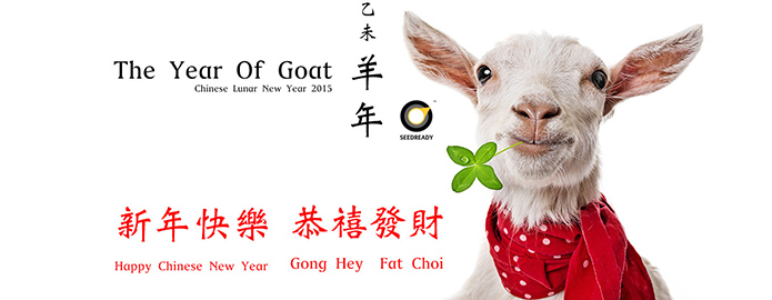 seedready year of goat lunar new year holiday