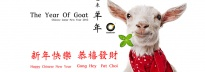 Hong Kong Lunar New Year (Goat/2015) Holiday